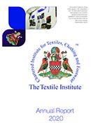 TI Annual Report 2020